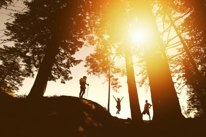 森林浴と日光浴